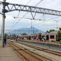 #BloggerWalking: Jalan-jalan ke Taman Nasional Gunung Halimun Salak (Bagian 5)