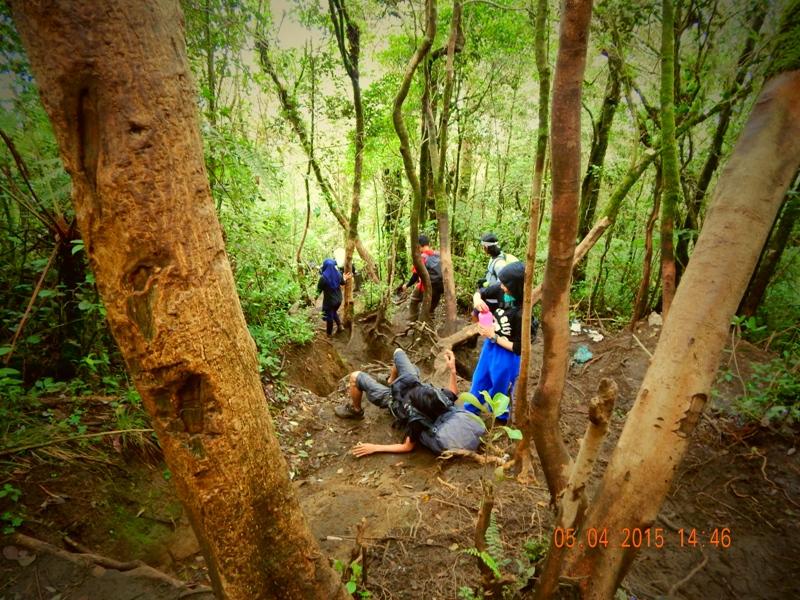 Pendakian Gunung Cikuray