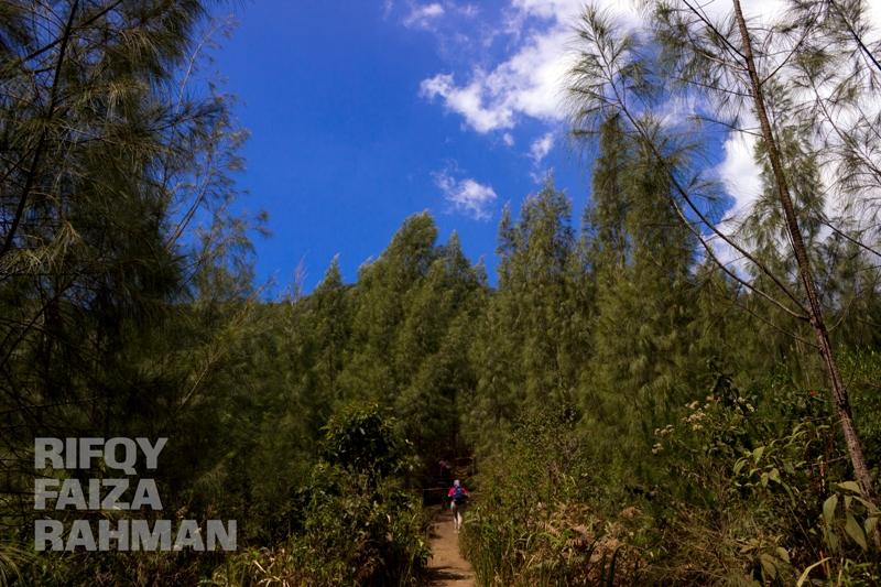 Coban Sumber Pitu Pujon Kidul