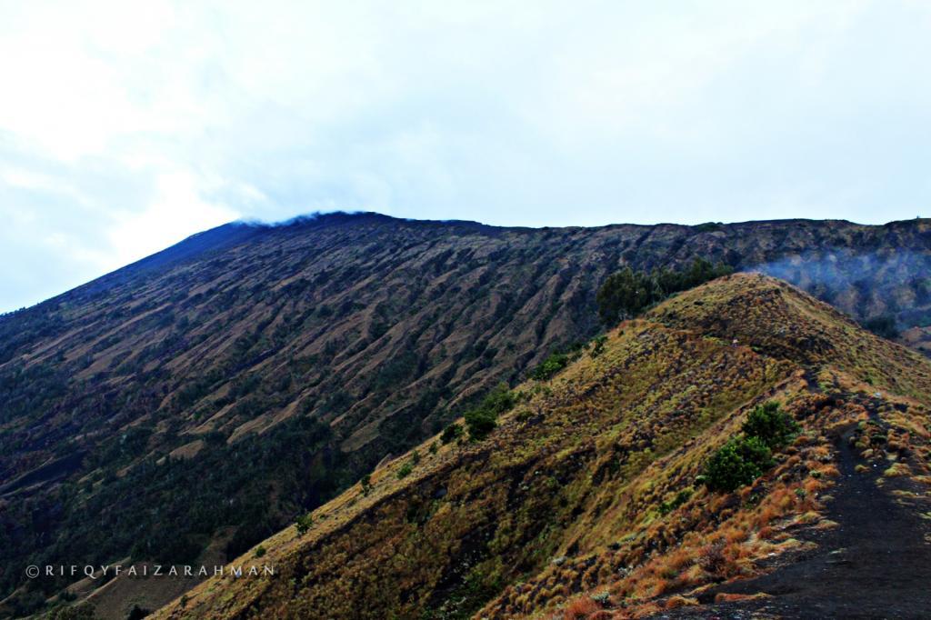 Plawangan Sembalun (2.639 mdpl), gigiran punggungan yang datar memanjang. Tempat camp terakhir sebelum puncak Gunung Rinjani.