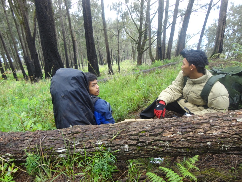 Lutfi (kiri) dan Dani sedang beristirahat dalam perjalanan ke puncak di seonggok pohon cemara gunung yang tumbang, di kawasan Alas Lali Jiwo.