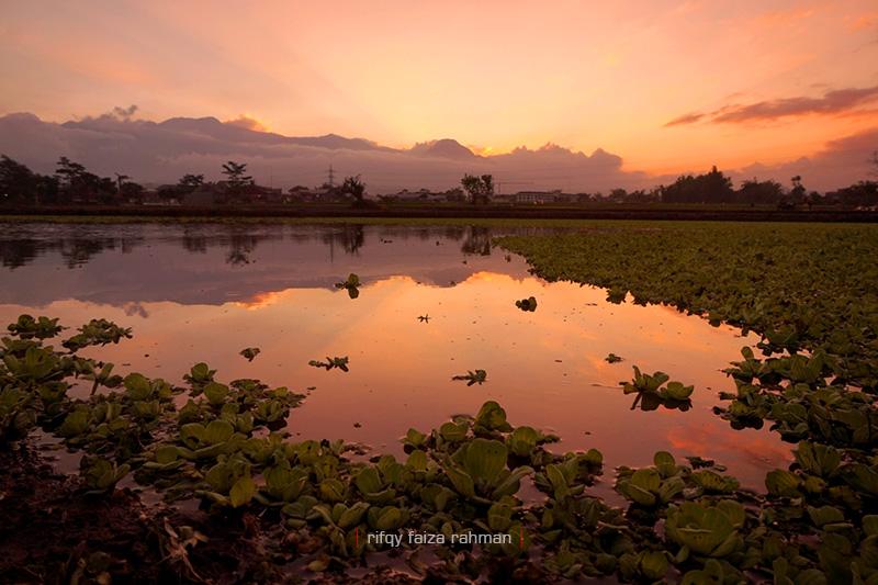 Refleksi Pegunungan Putri Tidur berlatar senja di suatu pedesaan di pinggiran kota Malang
