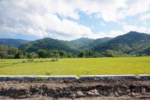 Pemandangan berupa sawah adalah salah satu yang akan banyak ditemui saat melintas di Trans Flores. Melihat pemandangan seperti ini akan menghibur dan sedikit mengobati mabuk darat.