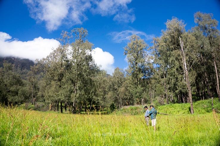 Lembah Kijang, Gunung Arjuno jalur Tretes, Pasuruan