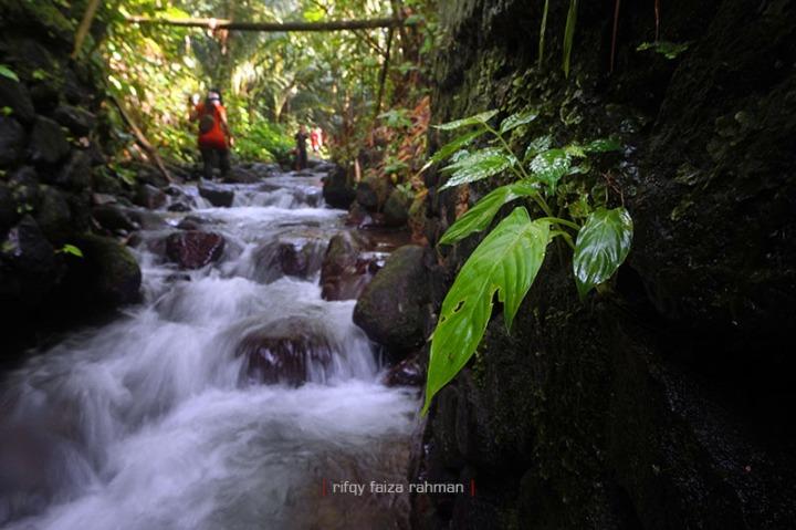 Pagi hari adalah saat paling tepat untuk melakukan kegiatan susur sungai di Pancoh