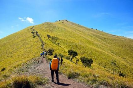 Jarak dari Pos 3 ke puncak Triangulasi sekitar 1,5 km. Atau sekitar 2 jam pendakian tanpa membawa beban.