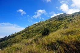 Hamparan sabana luas adalah nilai plus jalur pendakian Suwanting selain ketersediaan air