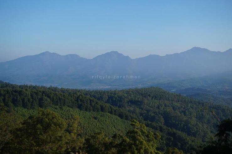 Pemandangan yang tersaji saat sejam awal pendakian