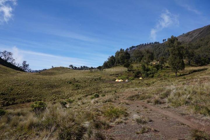 Sabana Sendang, ditempuh sekitar 7-8 jam pendakian dari basecamp