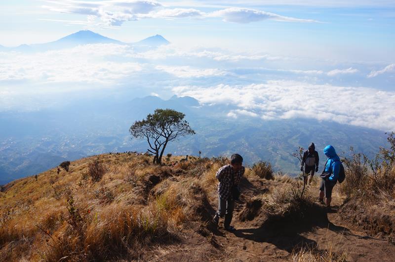 Pemandangan yang menemani sepanjang perjalanan ke puncak_Fotor