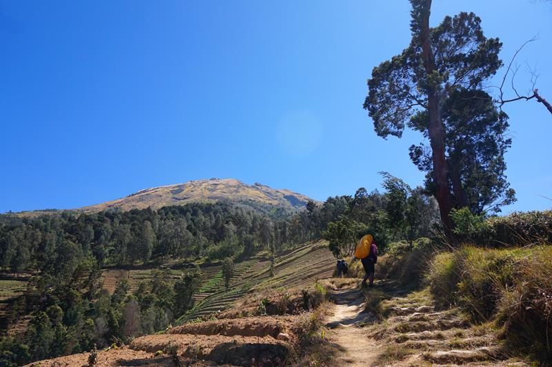 Jalur pendakian menuju Pos 1 dengan latar Gunung Sumbing