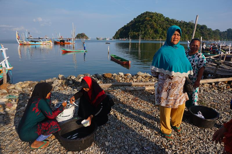 Membeli ikan segar langsung dari nelayan